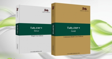 Tally Accounting and Billing Software - Raytech Systems - ScrollList.com